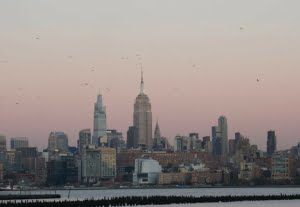 4216I will take a 4k video of Manhattan view from Jersey City